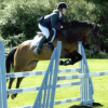 Jump lessons